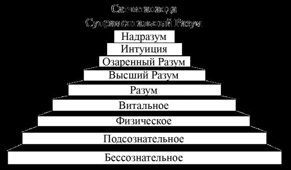 Схема Вертикальных Уровней Сознания